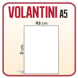 250 Volantini A5 14,8x21 cm