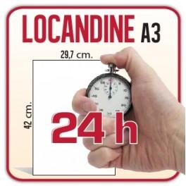 100 Locandine A3 - 42x29,7 cm