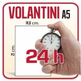 250 Volantini A5 - Stampa in 24H